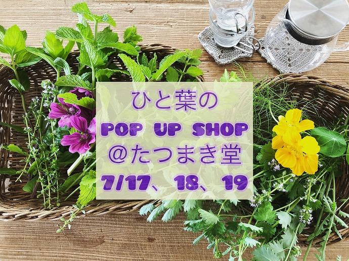 ひと葉の pop up shop @たつまき堂 @ たつまき堂